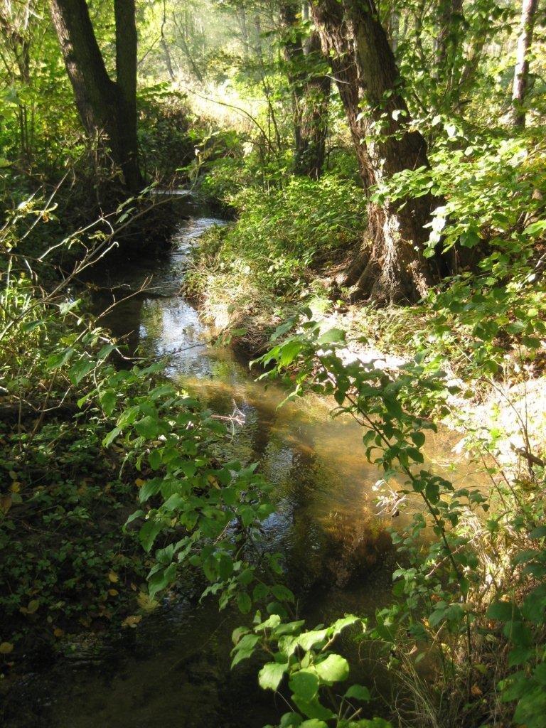 Kersko meandry potoka